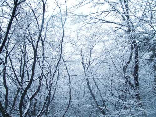 北陸地方は豪雪地帯