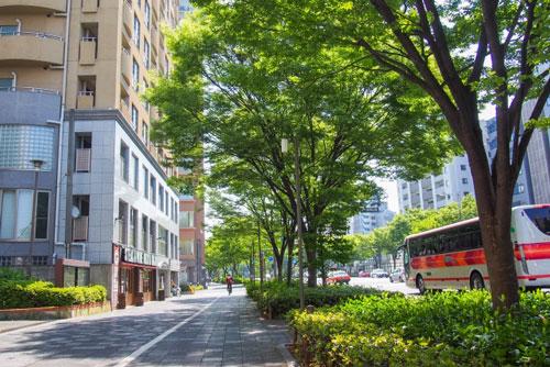 京都駅前の街並み