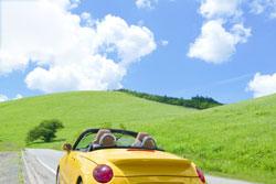 草原を見ながらドライブ