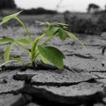 温暖化対策事業を拡大すれば環境保護業界が大儲けできるということ?